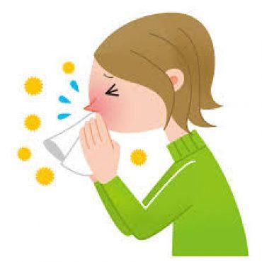 La influenza:  Mitos y recomendaciones